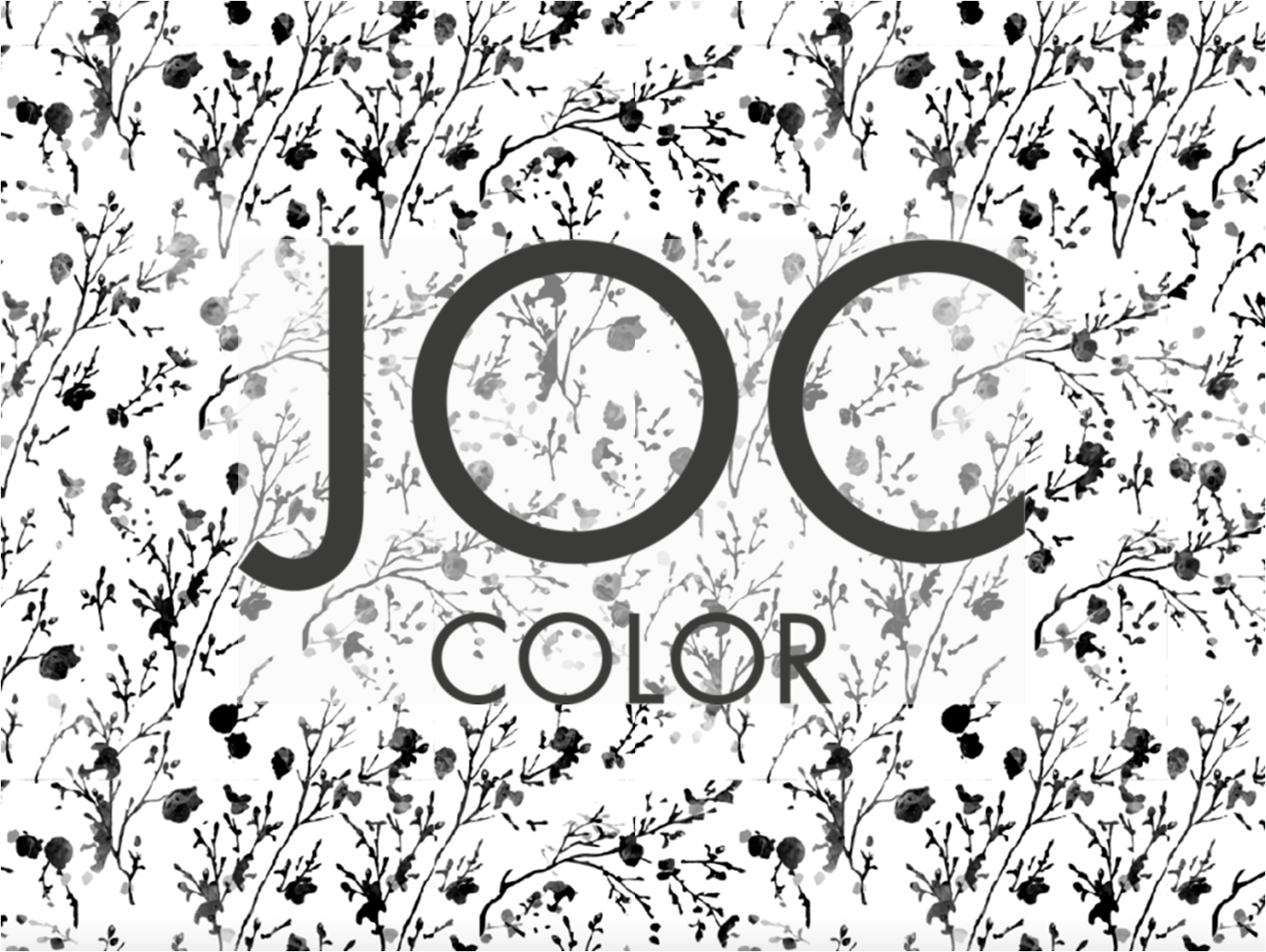 Joc Color Barex Italiana Презентация